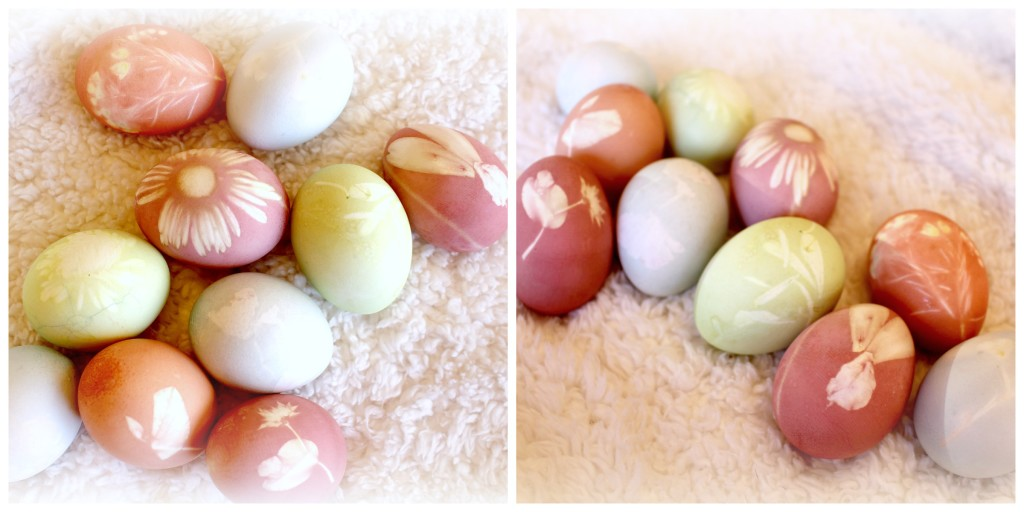 All natural easter egg dye using fresh flowers and for How to dye flowers using food coloring